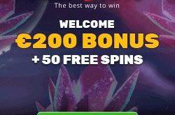 playamo bitcoin casino bonus